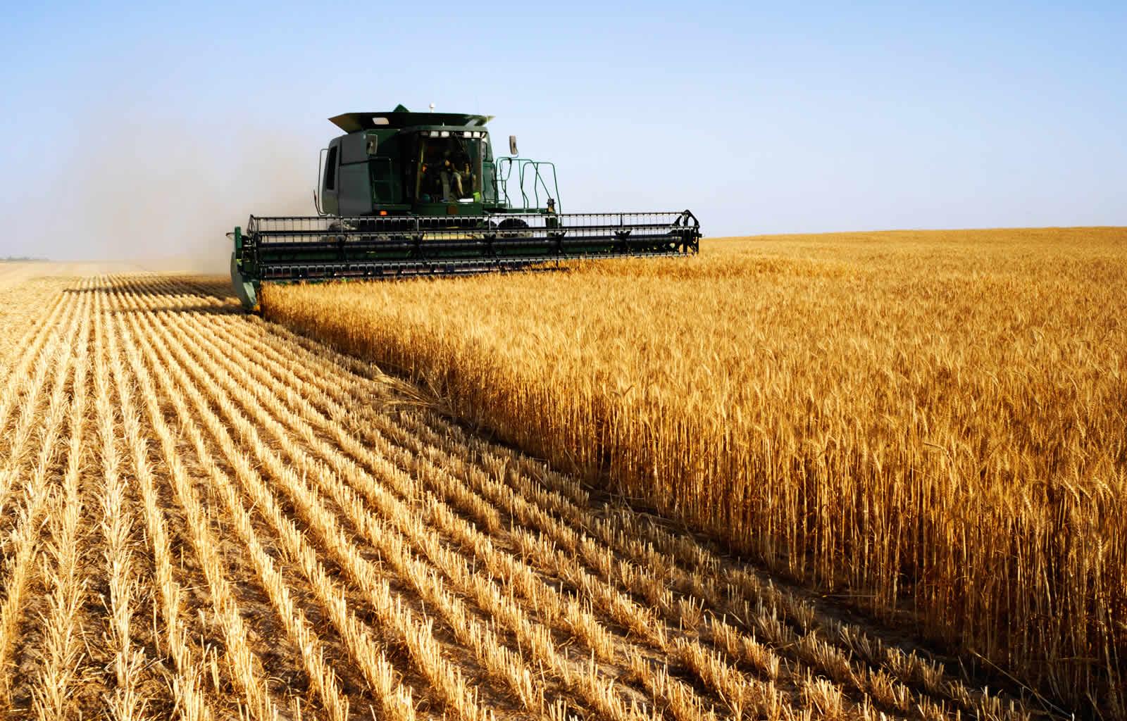 украинские аграрии.jpg