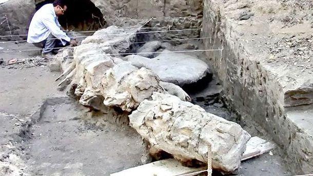 Найдены кости древнейшей акулы-мегалодона— Шок