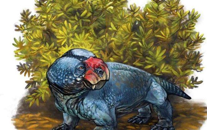 бульбозавр