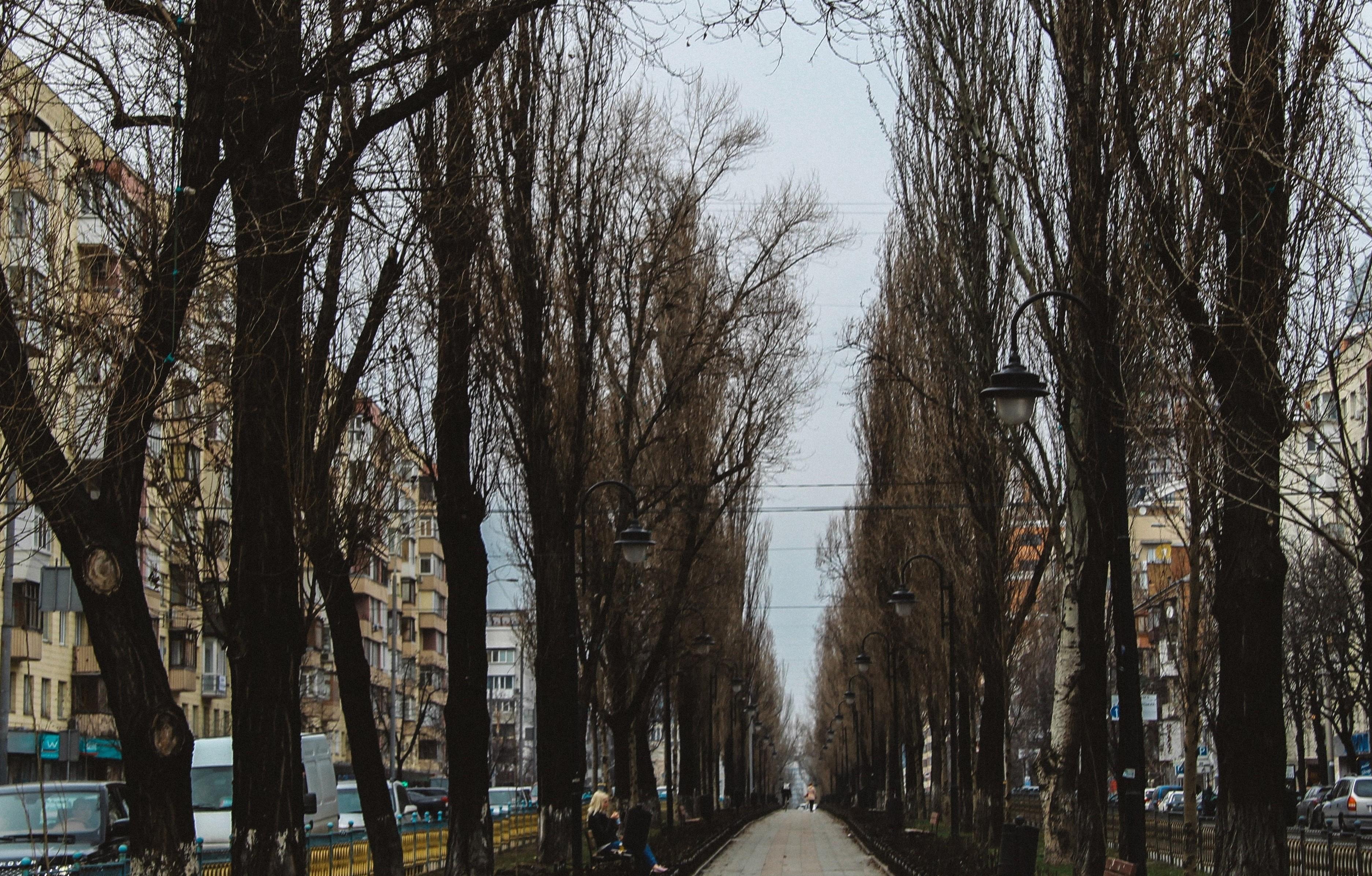 1 бульвар