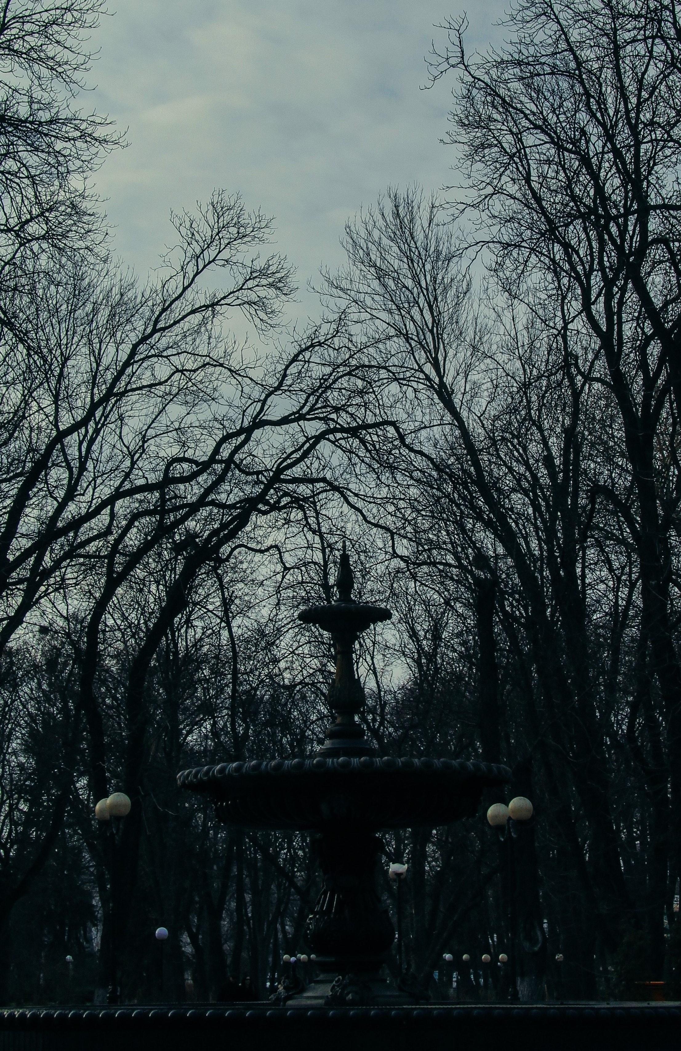 11 фонтан