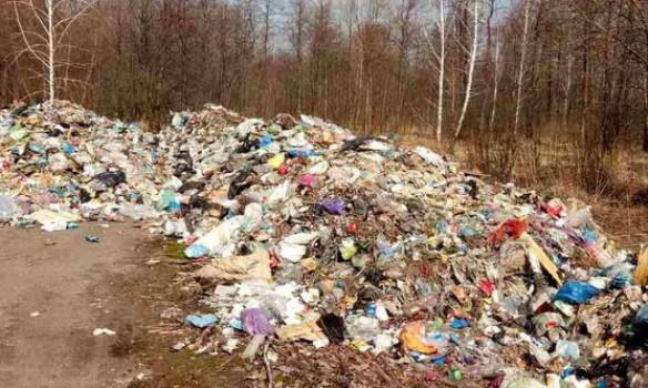мусор в житомире из львова