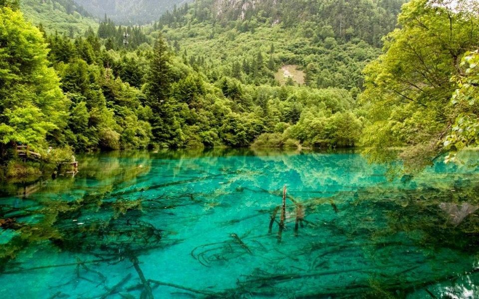Озеро цветов