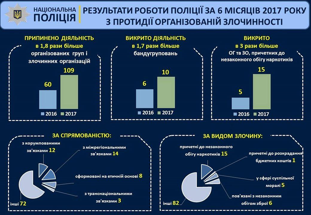 мвд инфографика 3