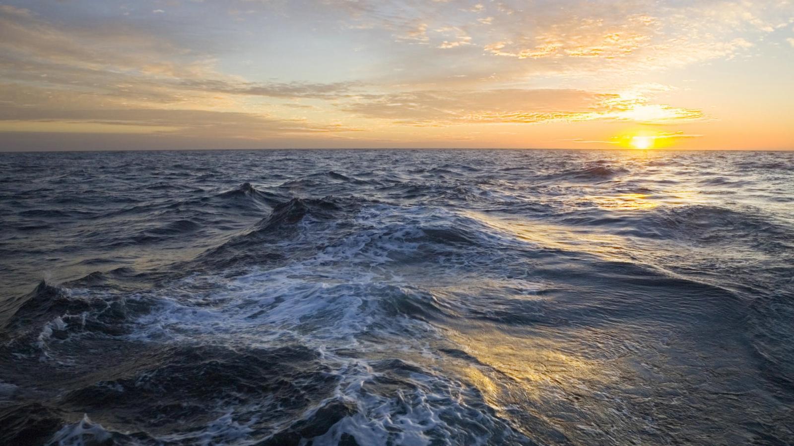 Мировой океан возможно восстановить за 30 лет, – учёные
