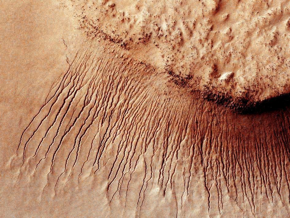 Марс линии
