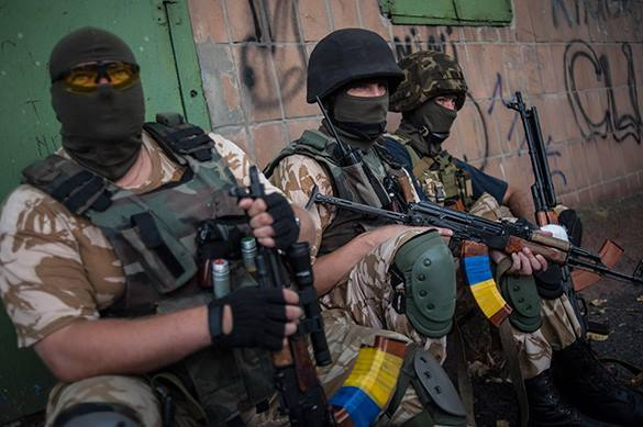 В Украинское государство приедет инспекционная группа изсоедененных штатов, Канады иДании