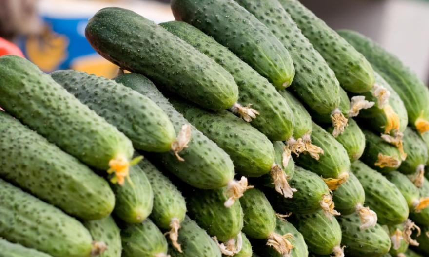 В 2020 году экспорт тепличных овощей был невыгоден
