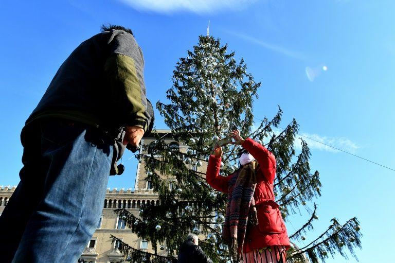 Рим елка