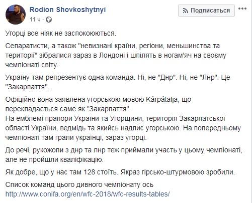 скрин Родион Шовкошитный