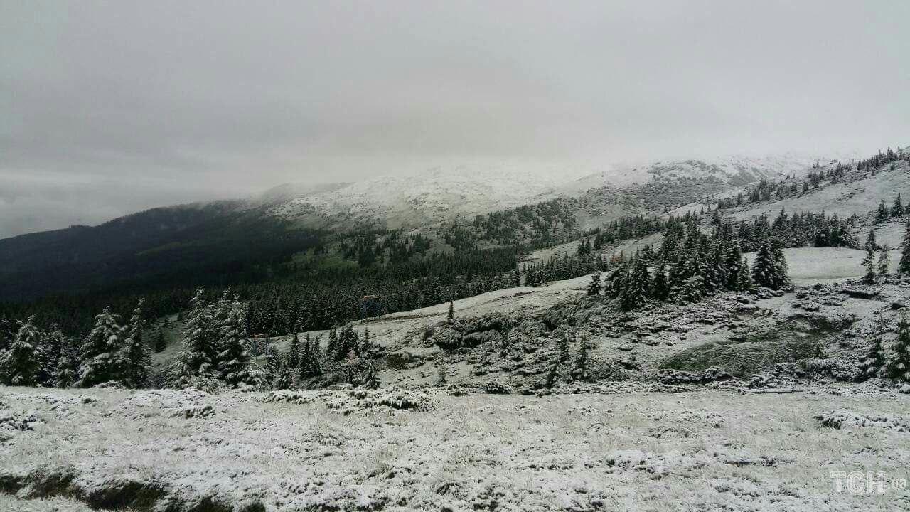 снег карпаты.