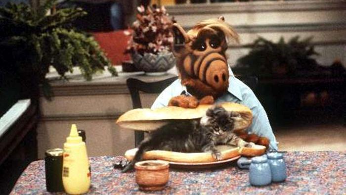 поедание кошек