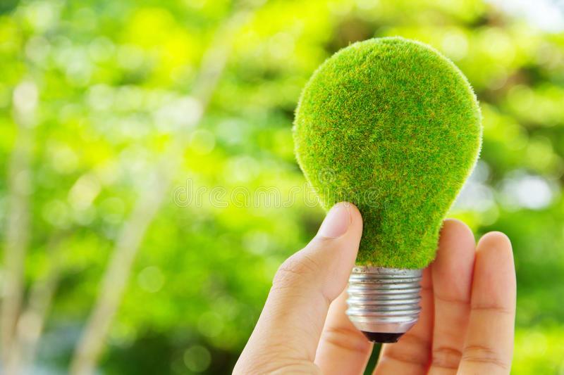 зеленый бизнес
