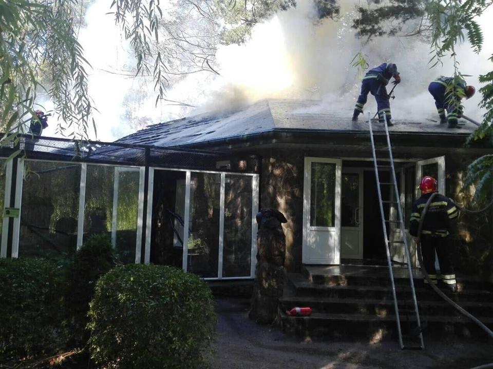 пожар в зоопарке1