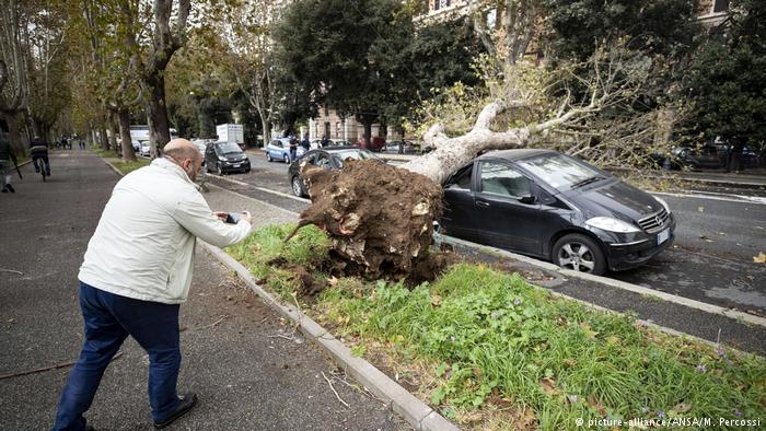 ветер повалил деревья в риме