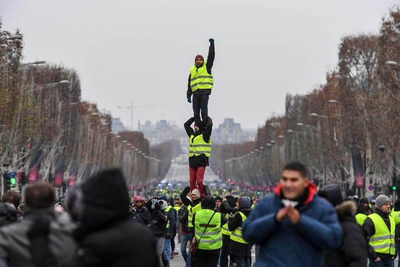 протест.