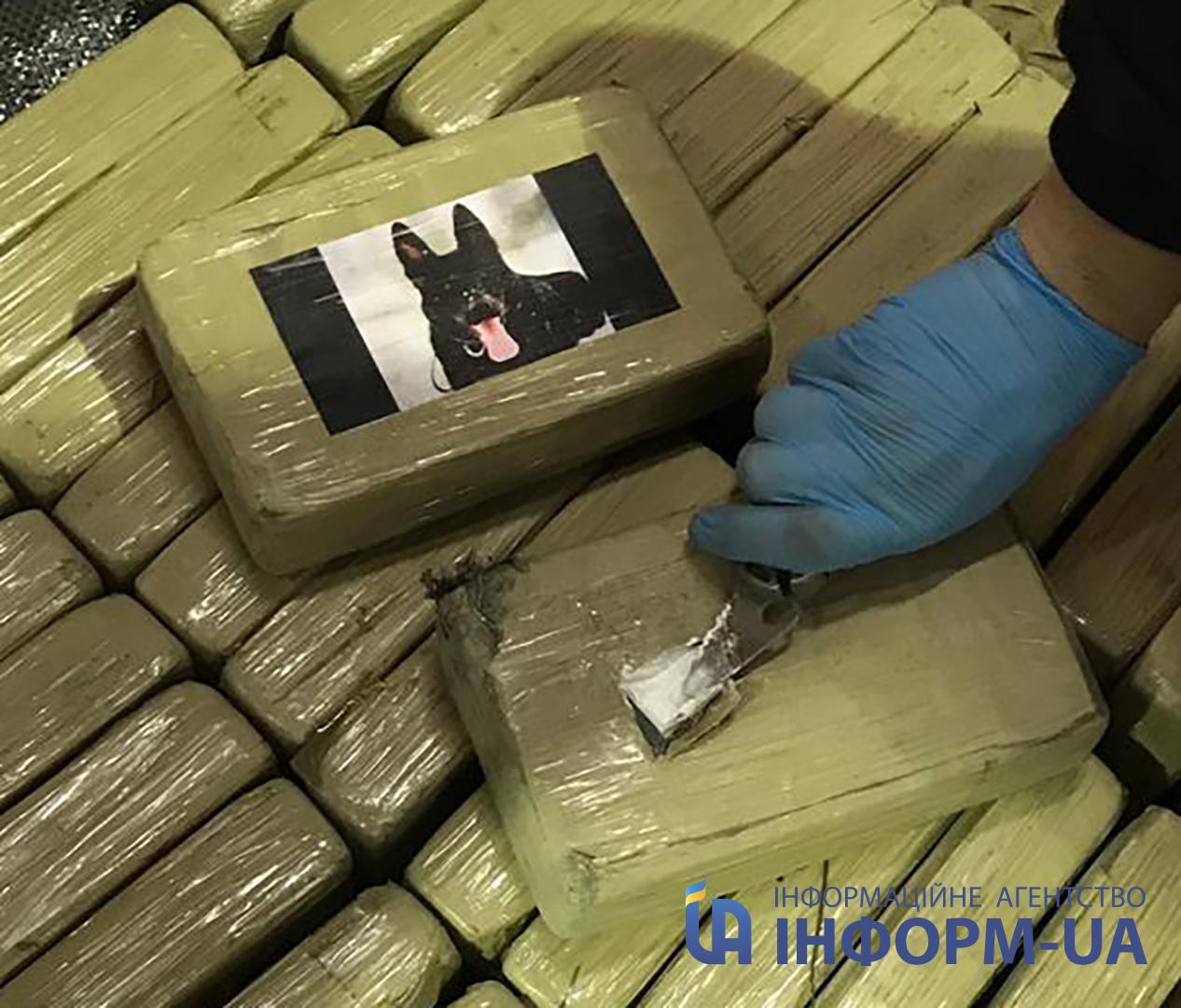 Разрез упаковки кокаина Собака