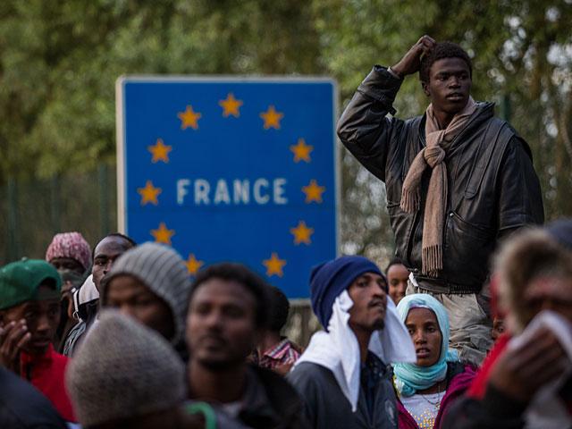 Французские мигранты