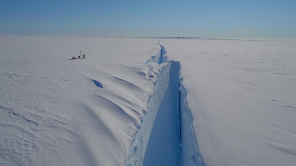 Ледник Бранта