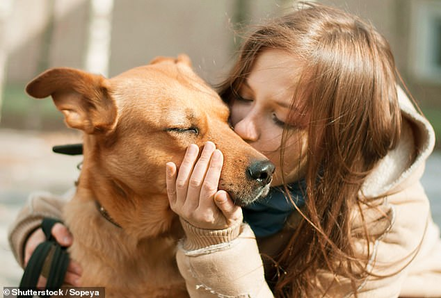 поцелуй собаки
