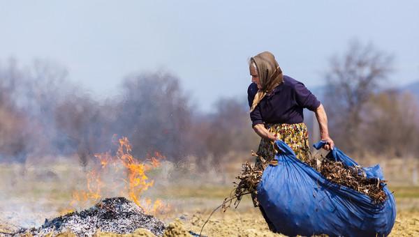 сжигание листьев.