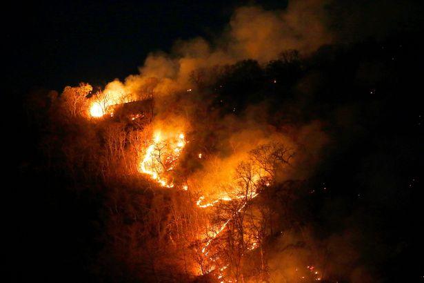 пожар в Бразилии