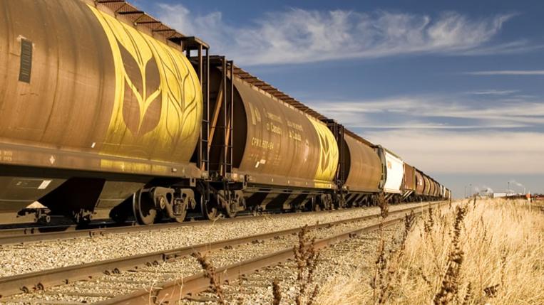 поезд зерно перевозит