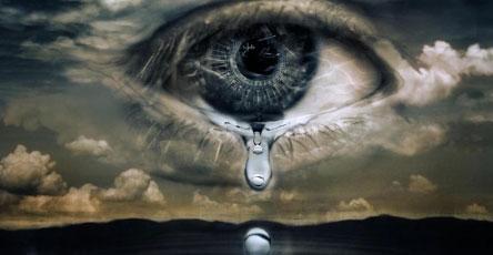 природа плачет