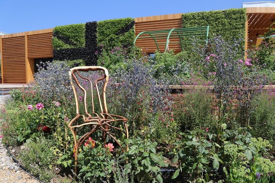 растения-мебель