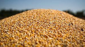 кукуруза элеватор