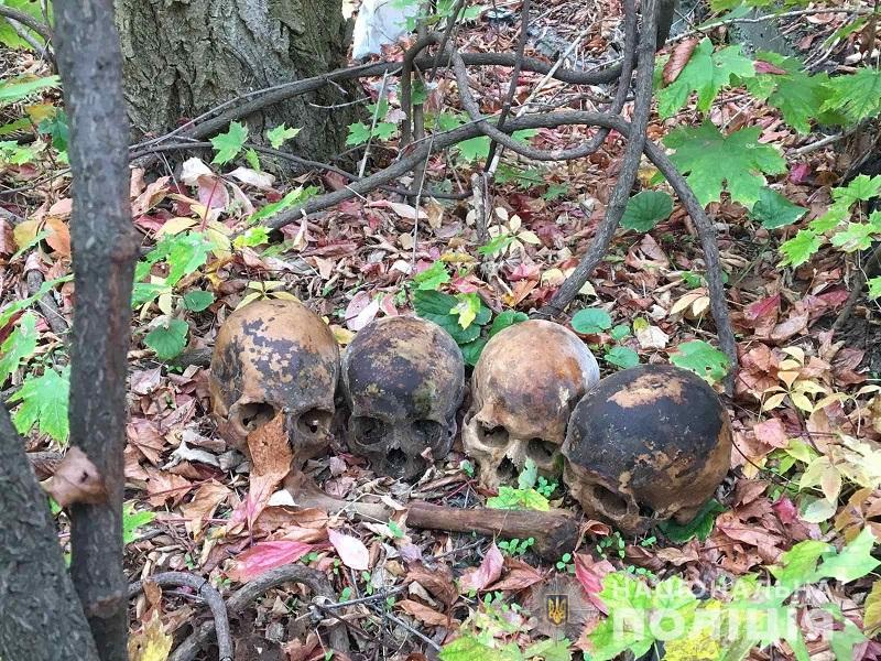 николаевские черепа