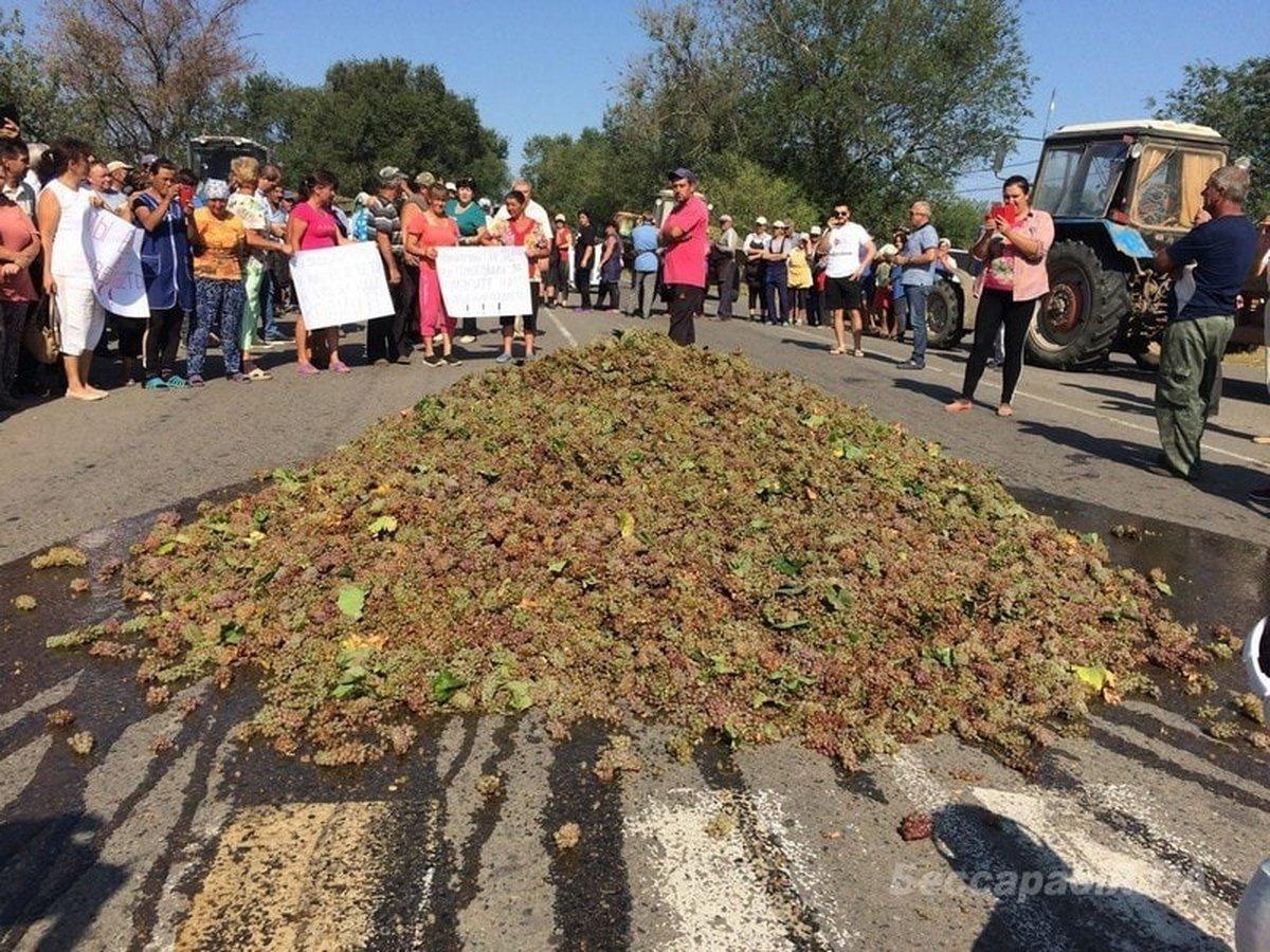забастовка виноградарей