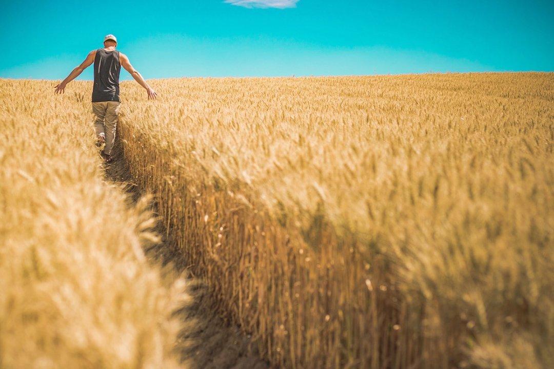 фермеры украины
