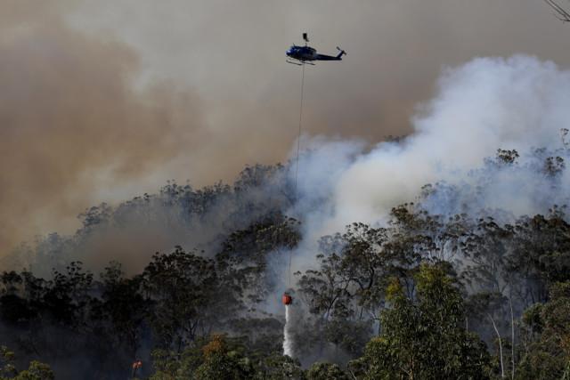 В Австралии из-за пожаров небо над Сиднеем затянуло дымом