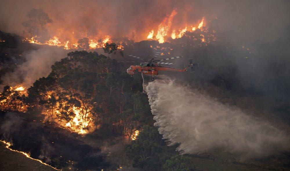 Австралия начинает масштабное расследование причин лесных пожаров