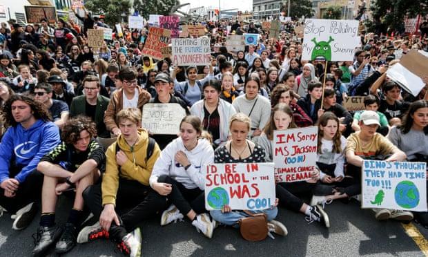 Новая Зеландия вводит уроки по борьбе с «экологической тревогой»