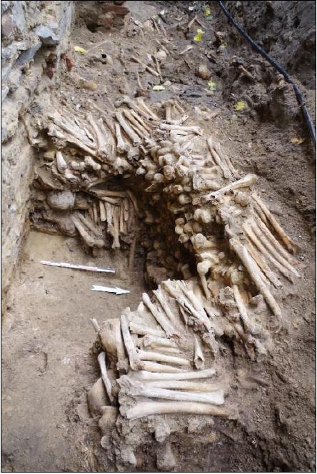 кости людей