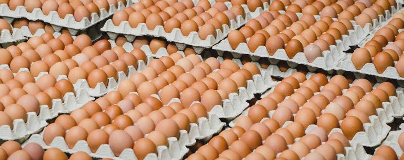 яйца цены
