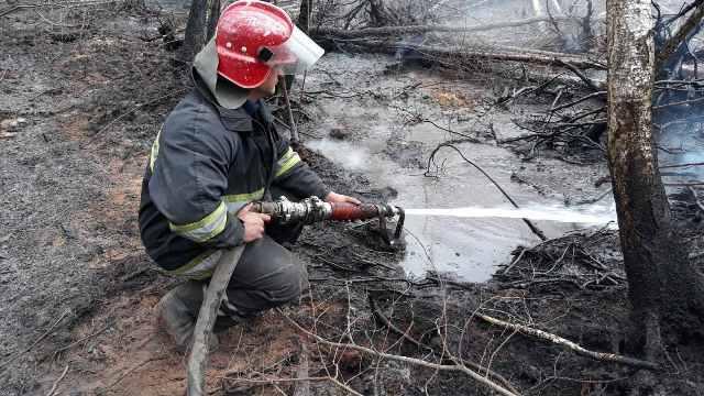 пожар Житомирская область