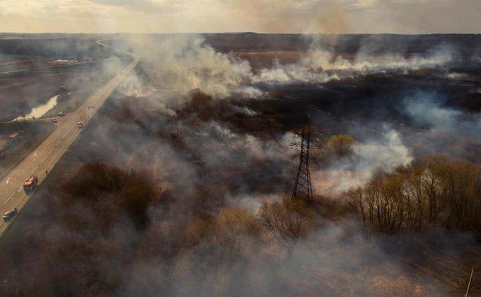 пожары в экосистемах