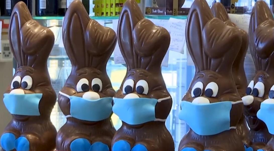 шоколад на карантине