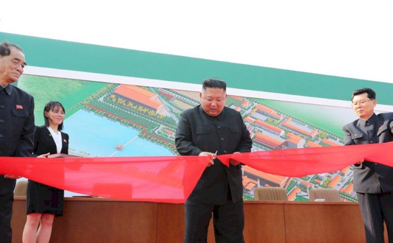 Ким Чен Ын после 20-дневного отсутствия неожиданно «воскрес»