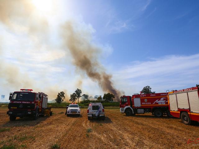 В Израиле из-за экстремальной жары – более тысячи пожаров