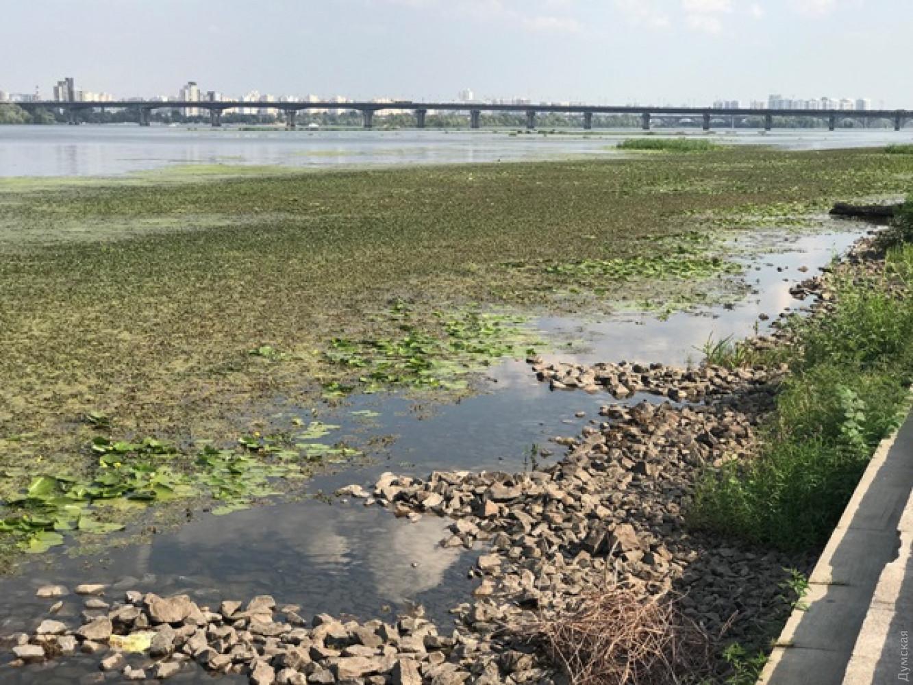 маловодье реки