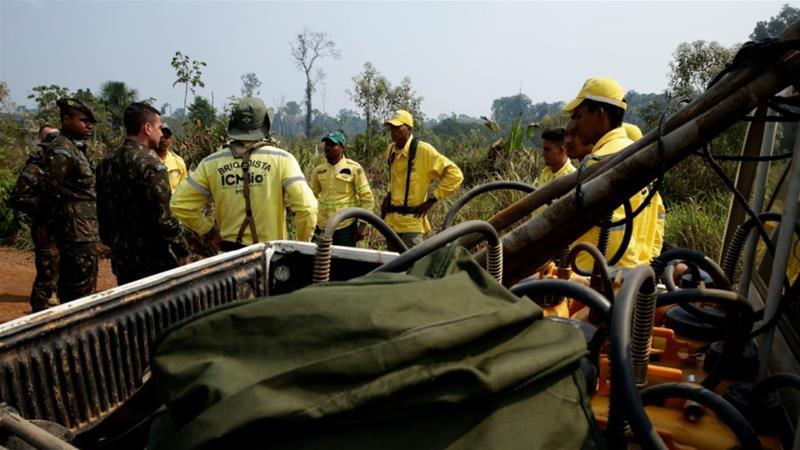 защита лесов Бразилия