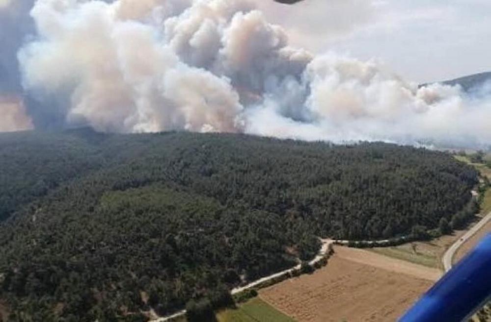 лесной пожар в турции