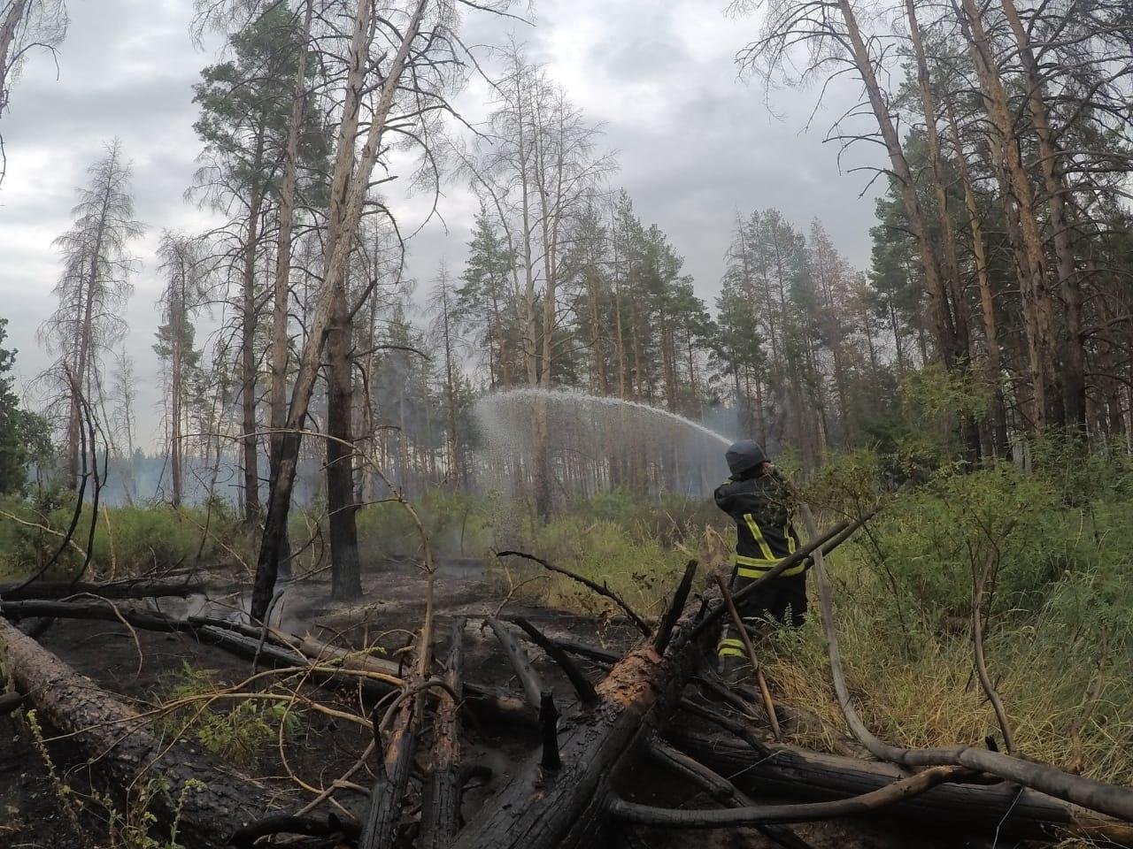 Луганская область пожар