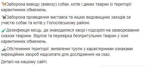 бешенство Киев