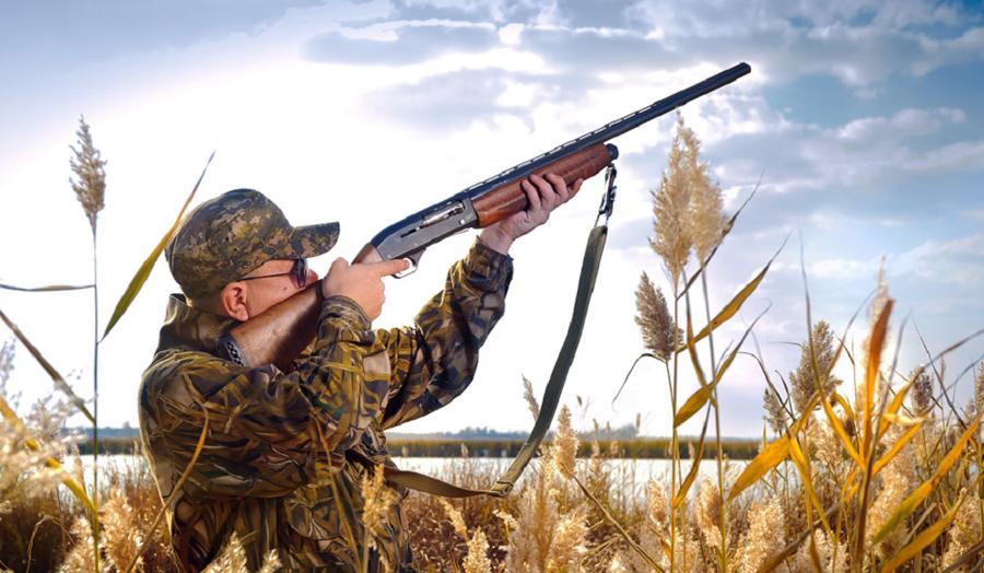 В Украине стартовал сезон охоты на диких уток