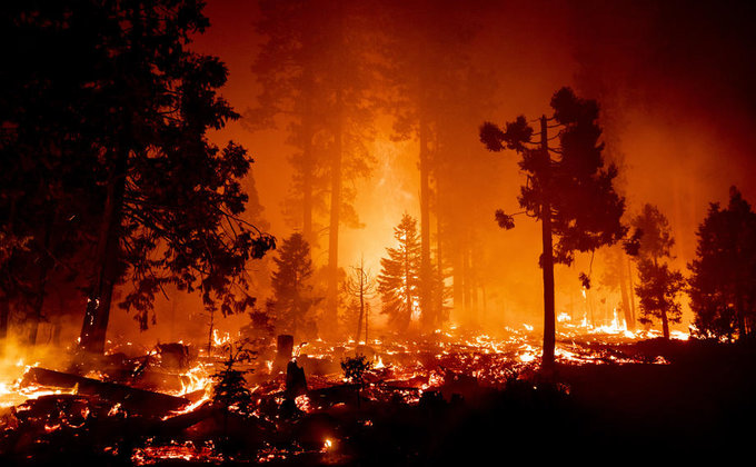 Пожары в западных регионах США забрали жизнь уже 33 человек